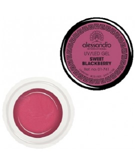 alessandro Colour Gel 141 Sweet Blackberry värviline geel küüntele 5g