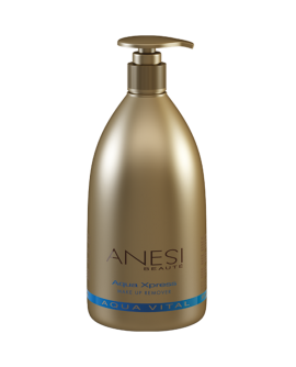 ANESI Aqua Xpress Make Up Remover - meigieemaldaja 500ml